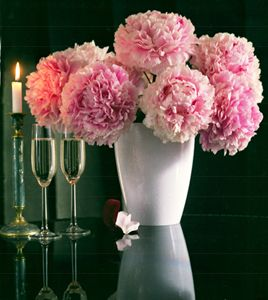 Peonies and champagne