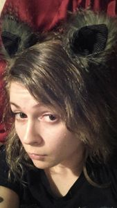Grey Cat ears - mizzmeow
