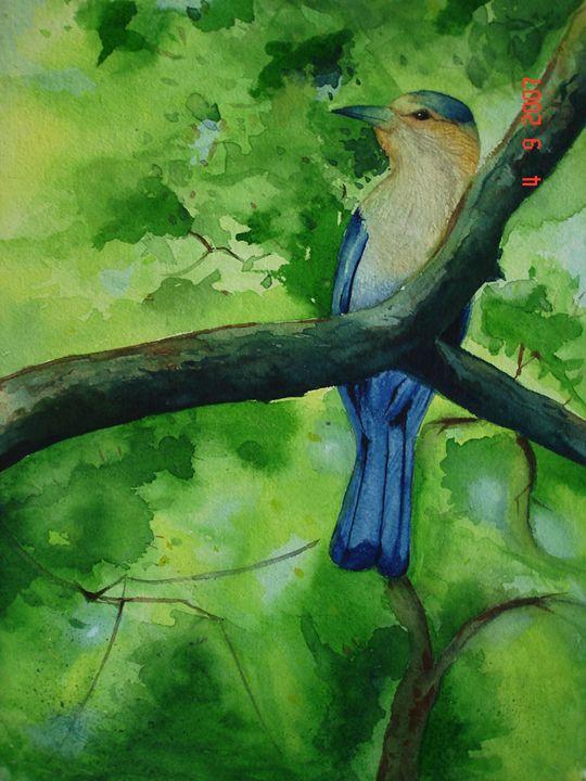 Bird from Heaven - Animesh Srivastava
