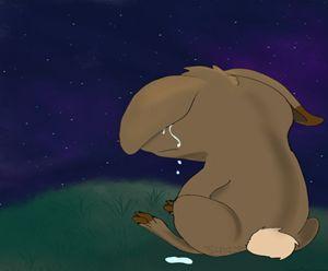 The Tearful Bunny