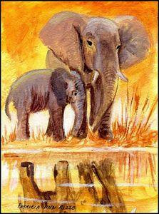 Original Art - Elephants