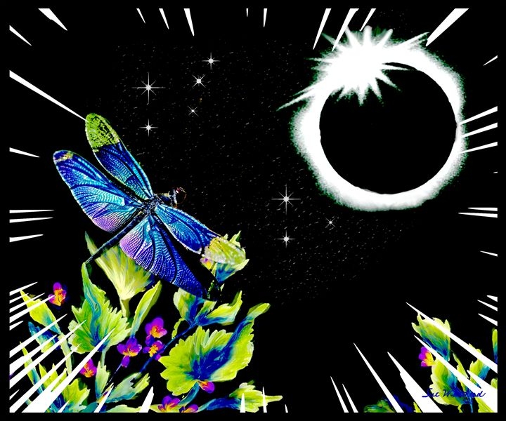 Dragonfly Eclipse - Sue Whitehead Arts