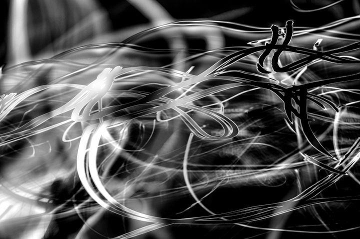 Barbed Wire - Stacia Morrison