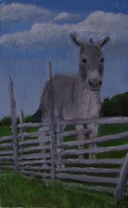 A Donkey for Stubbornness