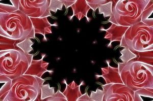 Abstract Roses 5