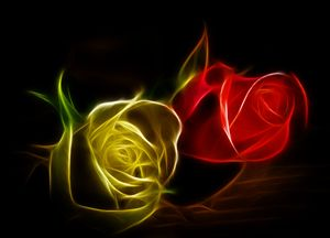 Lighted Roses