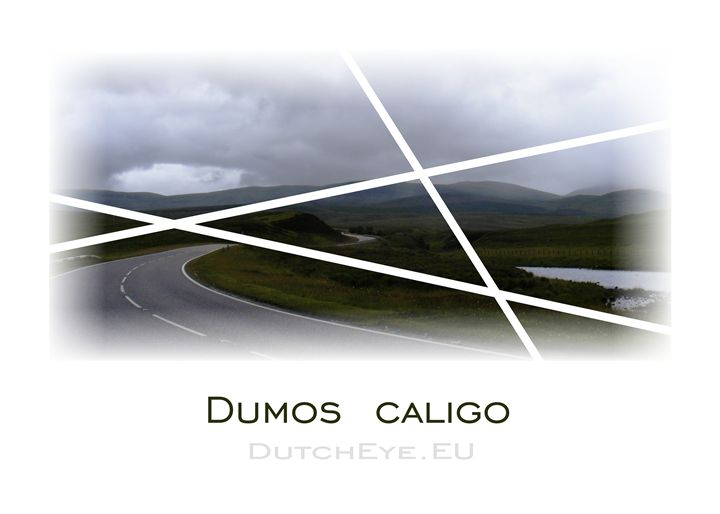 Dumos Caligo - W - DutchEye.EU