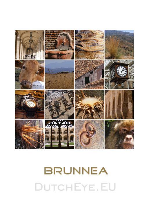 Brunnea - W - DutchEye.EU