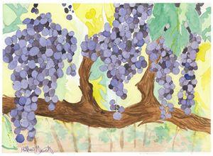 vineyard - Watered