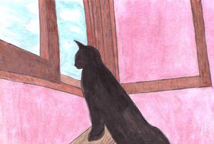 The exploring cat