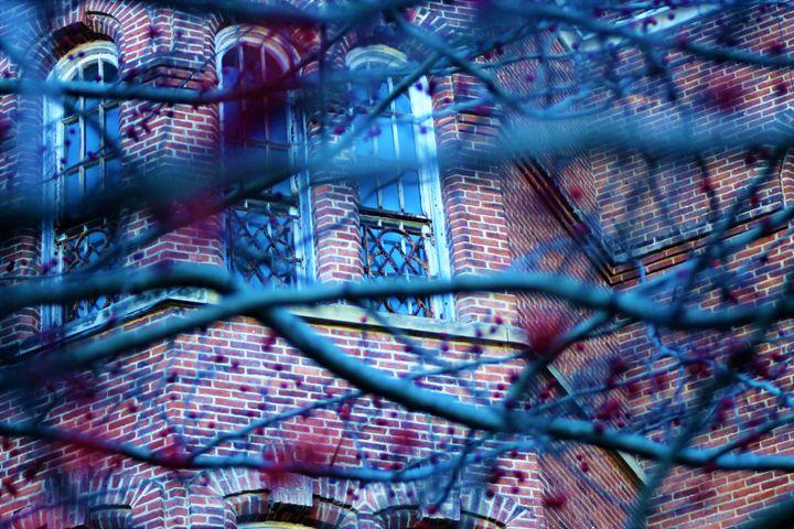 Windows - Sarah Theller: Artist