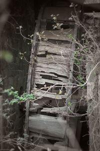 Abandoned Water Wheel