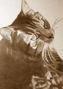 Keetah