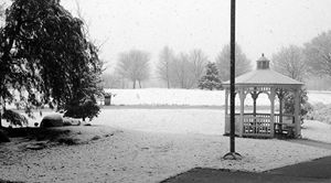 Winter at the Park - Alec Carr