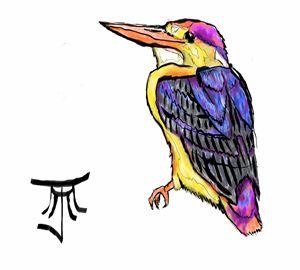 Oriental Dwarf King Fisher
