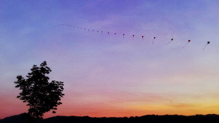 Kites Over The Valley - Silhouettes