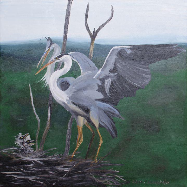 Grey herons family - Claudia Luethi alias Abdelghafar