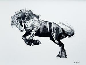 Black Stallion - Savanti Art Gallery