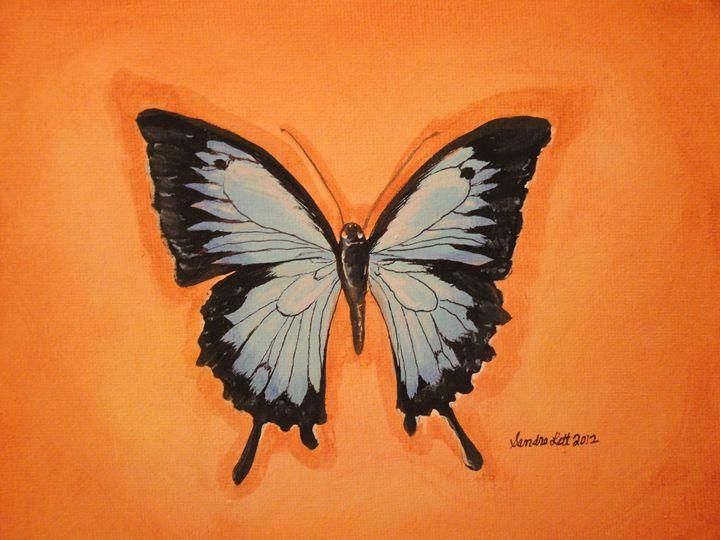 Butterfly on Orange - Sandra Lett