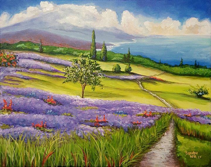 Lavender Fields - Sandra Lett