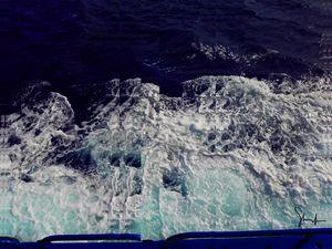 Shredded Sea