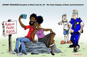 PERMIT REQUIRED - M. Rasheed Cartoons