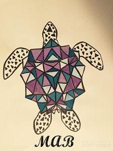 Geometric Turtle