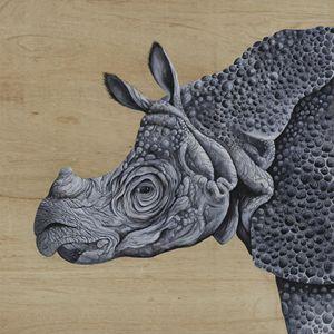 Javanese Rhino