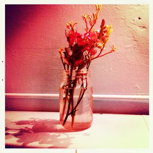 Washed out Flowers