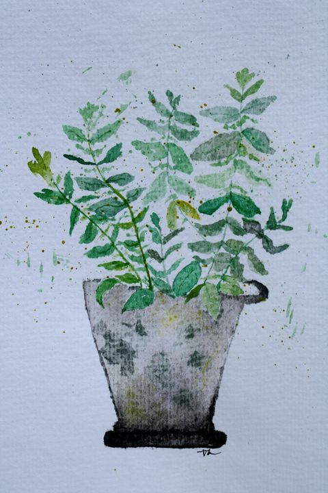 Fern Planter - Zachry Designs