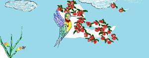 Hummingbrid pollinator