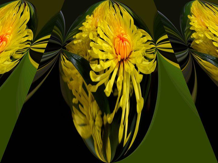 Flower27 - Pepsiart