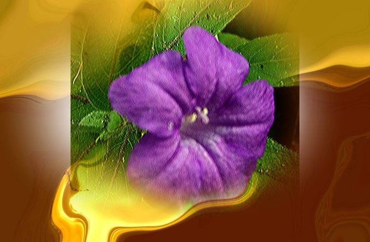 Flower 77 - Pepsiart