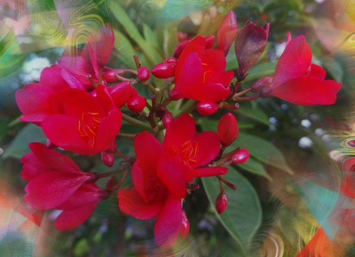 Flower 78 - Pepsiart
