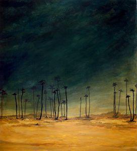 India Desert Storm