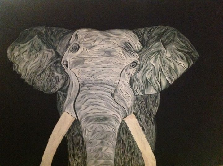 Elephant Tusk - Memory's Gallery