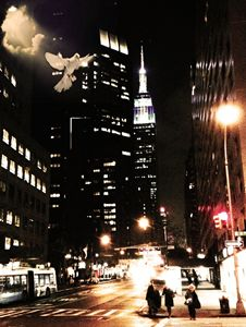 3rd Avenue Dove