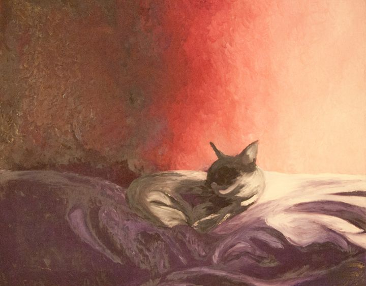 Cat on a Pillow - Cameo Gallery
