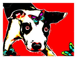 Dog and Butterfly - Jann Paxton  Studio Collection