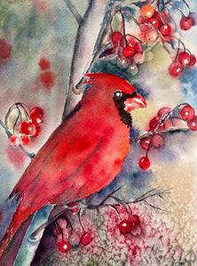 Christmas time- Cardinal