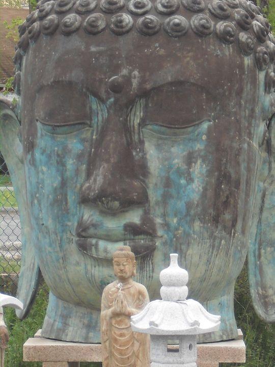 zen garden - L'Orangerie