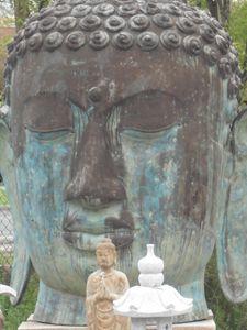 meditation support