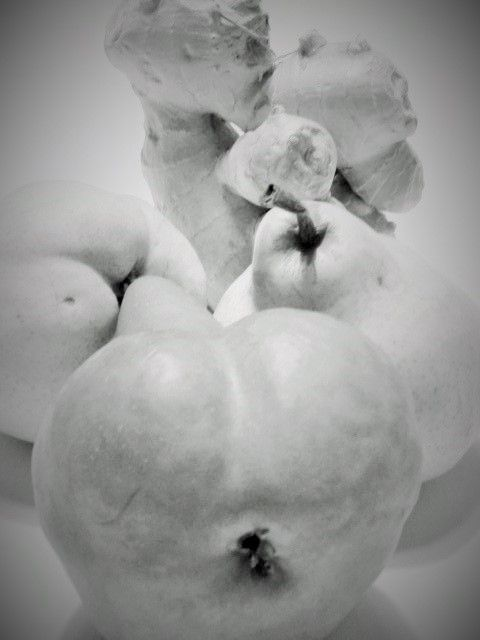 Pear and ginger forms - L'Orangerie