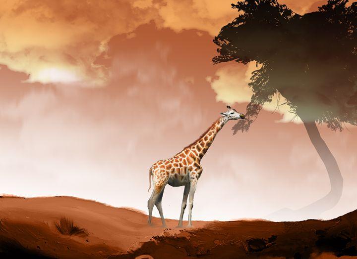 giraffe eating grass - Lee went
