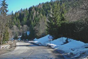 Mountain Roadside