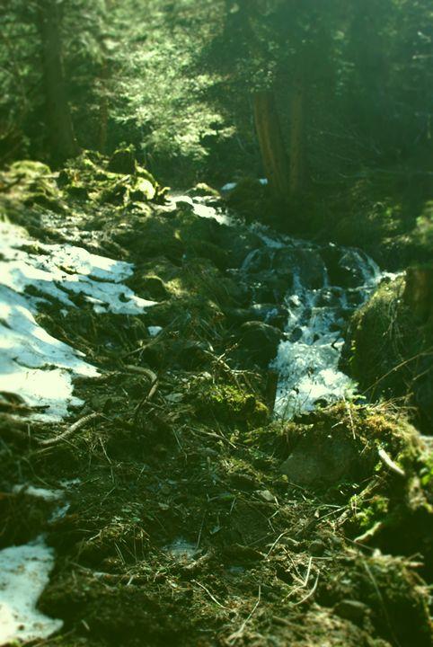 Green Mountain Stream - Hellz