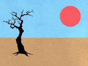 minimal desert