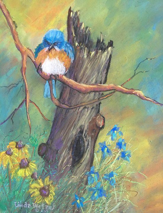 Drying My Feathers - Linda Wetzel Fine Art
