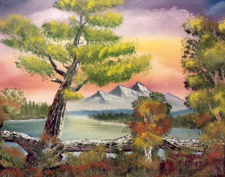 Old Bark tree by Lloyd B - Lloyd