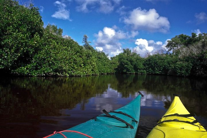 Kayak Point of View - Sally Weigand Images